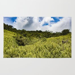 Beautiful Blue Sky Filled with Clouds of the Fern Covered Side of Mombacho Volcano, Nicaragua Rug