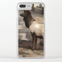 Young Elk Bucks   -  Banff Alberta Clear iPhone Case