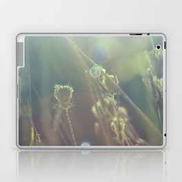 grass dreams Laptop & iPad Skin