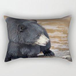 Black Bear (Ursus americans) near water Rectangular Pillow