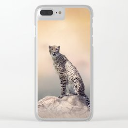 Young Cheetah sitting on a rock Clear iPhone Case