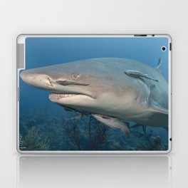 Have You Seen My Fish?  Laptop & iPad Skin