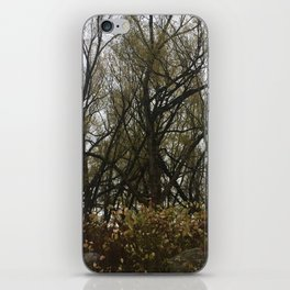 in the willows iPhone Skin