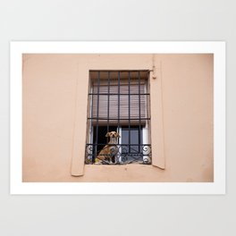 At the window Art Print