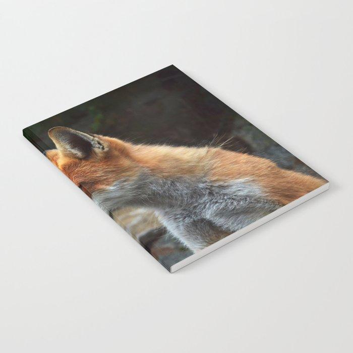 Fox renard 4 Notebook