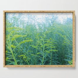 Turquoise Goldenrod Serving Tray