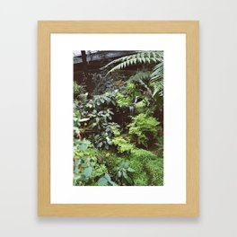 plants are friends Framed Art Print