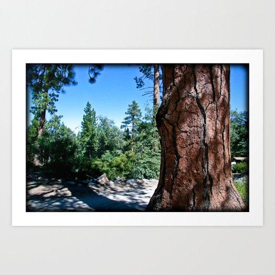 Camp Tree Art Print