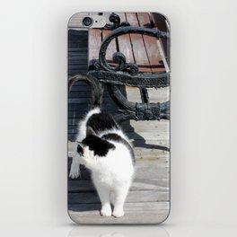 Boardwalk Kitty iPhone Skin