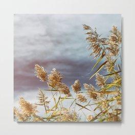 Brigantine Winds Metal Print