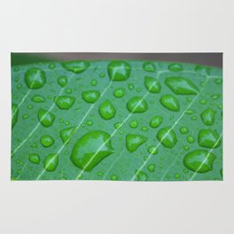 Rainy Garden Rug