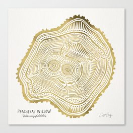 Peachleaf Willow – Gold Tree Rings Canvas Print