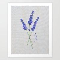 Lavender Painting Print Art Print
