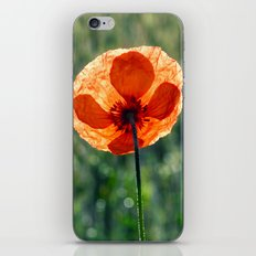 Poppy in a green meadow-Poppies and Flowers on #Society6 iPhone & iPod Skin