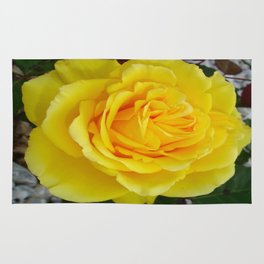 Head On View Of A Yellow Rose With Garden Background Rug