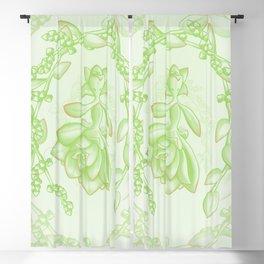 Succulent Sprite - aeonium kiwi Blackout Curtain