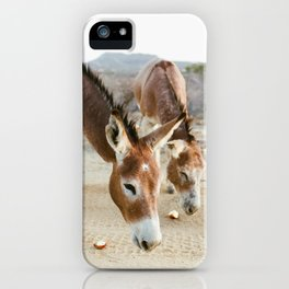 Two Donkeys Eating Apples iPhone Case
