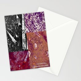 Ancient Seabed Collection Collage - Multi Stationery Cards