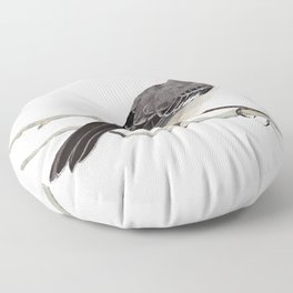 Northern mockingbird - Cenzontle - Mimus polyglottos Floor Pillow