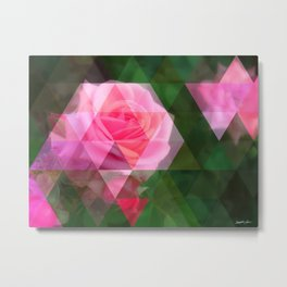 Pink Roses in Anzures 1 Art Triangles 1 Metal Print