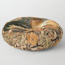 Fulvous Whistling Duck Floor Pillow