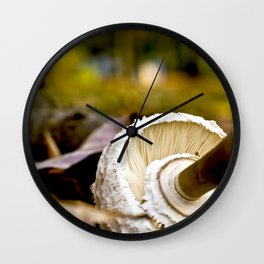 Where Is Alice? Wall Clock