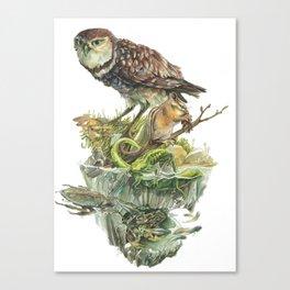 Sawtooth Biome Canvas Print