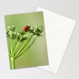 Spring 79 Stationery Cards