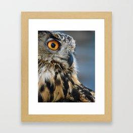 Eye of the Wise Framed Art Print