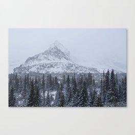 The winter landscape Canvas Print