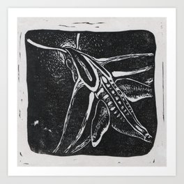 The Hummingbird Moth Art Print