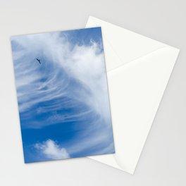 Bird surfer - Paraty - RJ Stationery Cards