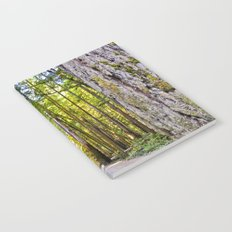 Redwood Forest Notebook