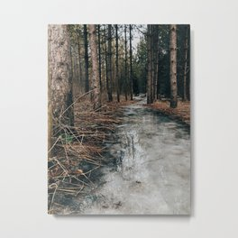 Mirror path in the forest Metal Print