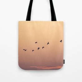 Pájaros Tote Bag