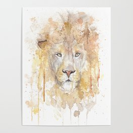 """Watercolor Painting of Picture """"African Lion"""" Poster"""