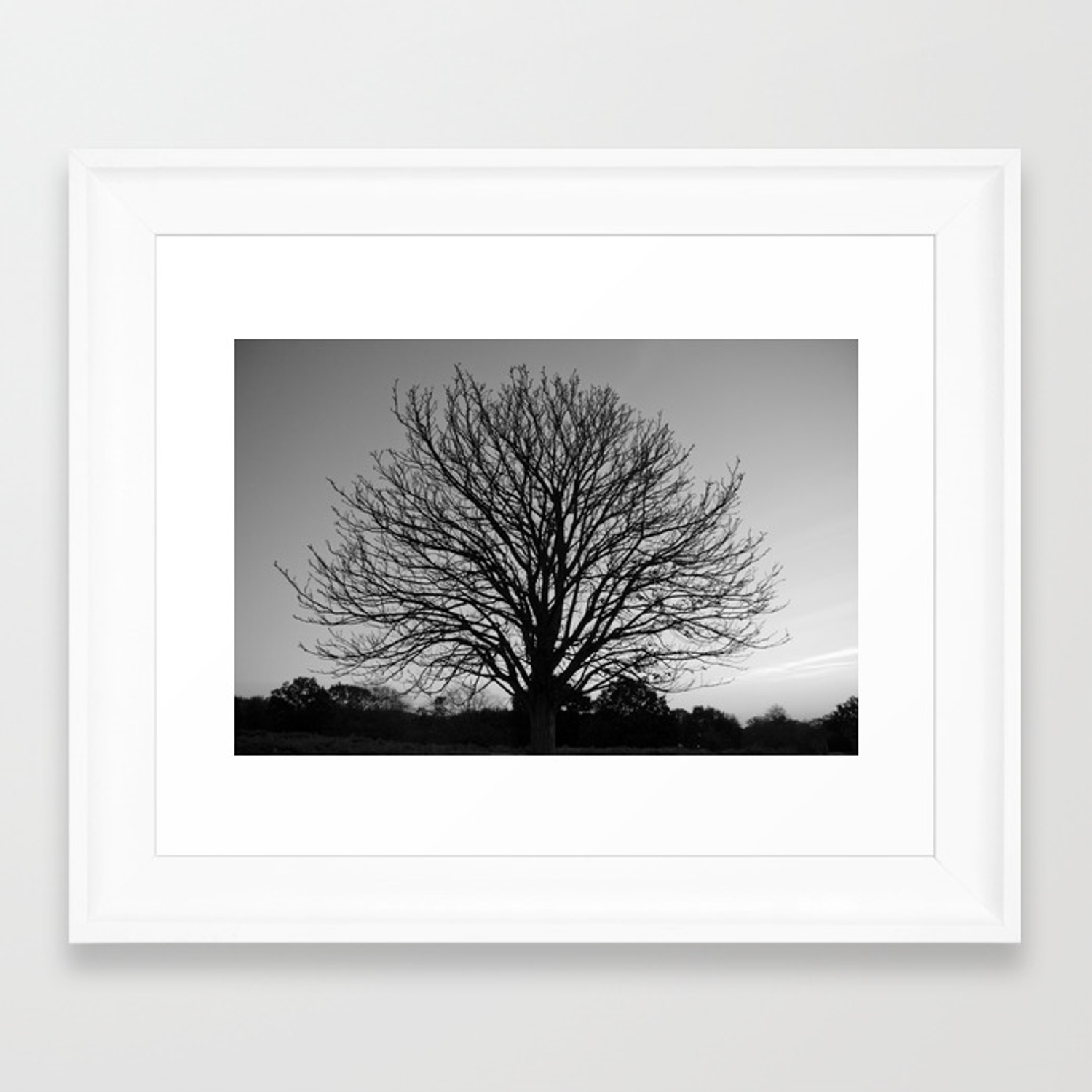 Richmond Park B W Framed Art Print By Morningvioleta Society6