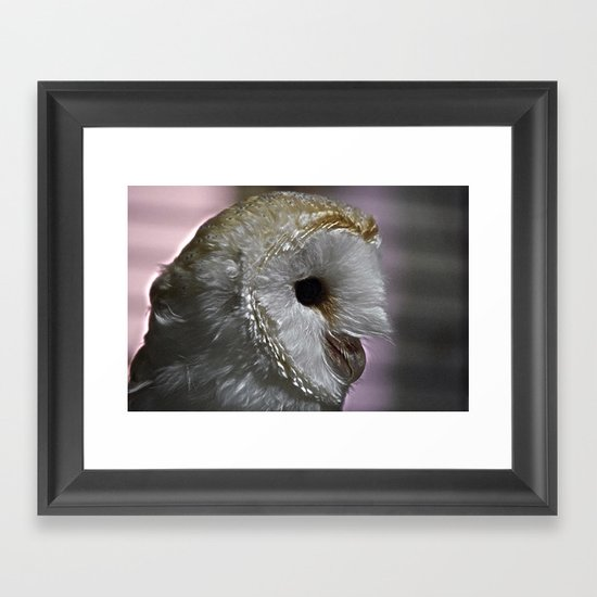 The Barn Owl Framed Art Print