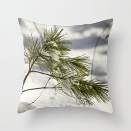 Braced for a Maine Winter Throw Pillow