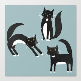 Black and White Cats Canvas Print