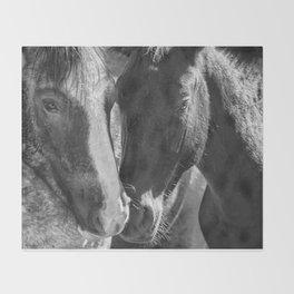 Bachelor Stallions - Pryor Mustangs - BW Throw Blanket