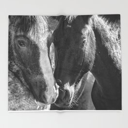 Bachelor Stallions - Pryor Mustangs - BW Throw Blanket