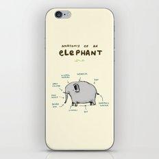 Anatomy of an Elephant iPhone & iPod Skin