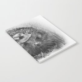 Hedgehog Notebook