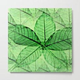 Foliage 2 Metal Print
