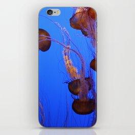 Jelly fish at the Monterey Aquarium. iPhone Skin