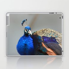 Peacock world Laptop & iPad Skin