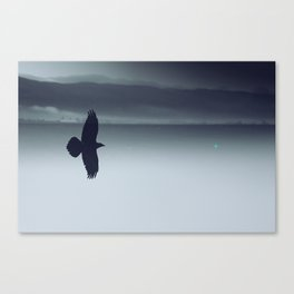 Crow And His Shadow Canvas Print