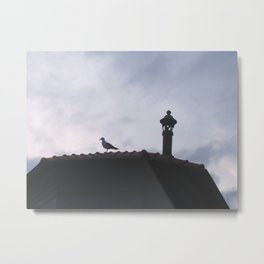 Bird on a rooftop Metal Print