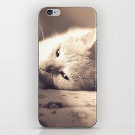 Maia iPhone Skin